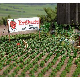 Busch 1265 H0 Aardbeien planten