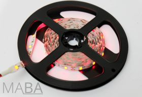 MABA Led strip Rood 5m