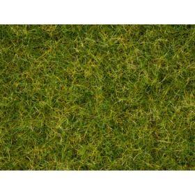 Noch 07072 Strooigras ''zomer'' 2,5 tot 6 mm