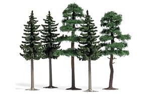 Busch Bomen